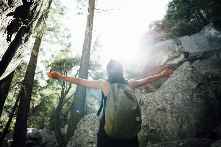 S'initier aux bains de forêt pour notre santé mentale, émotionnelle etphysique