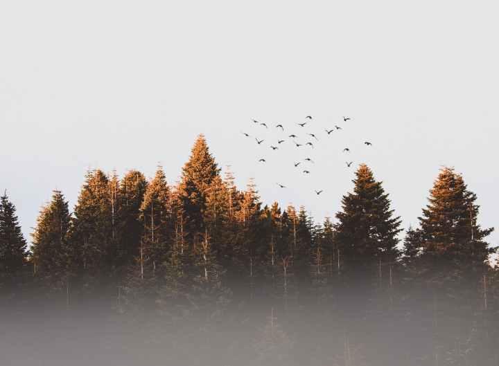 Changement d'heure et déprime saisonnière : 7 astuces pour aider à rehausser son énergie et sonmoral